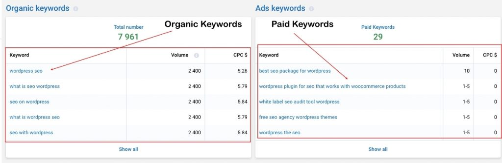 Organic and Paid Keywords serpstat review